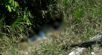 Até um cachorro que passava as margens da rodovia foi vítima do tiroteio