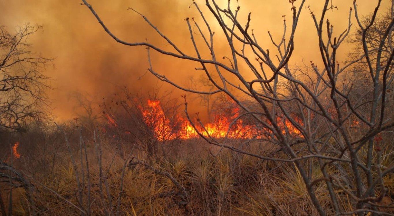 A origem do incêndio ainda é desconhecida
