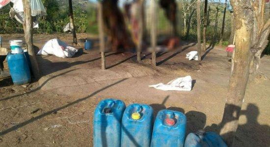 Polícia Militar fecha matadouro clandestino em Limoeiro, no Agreste