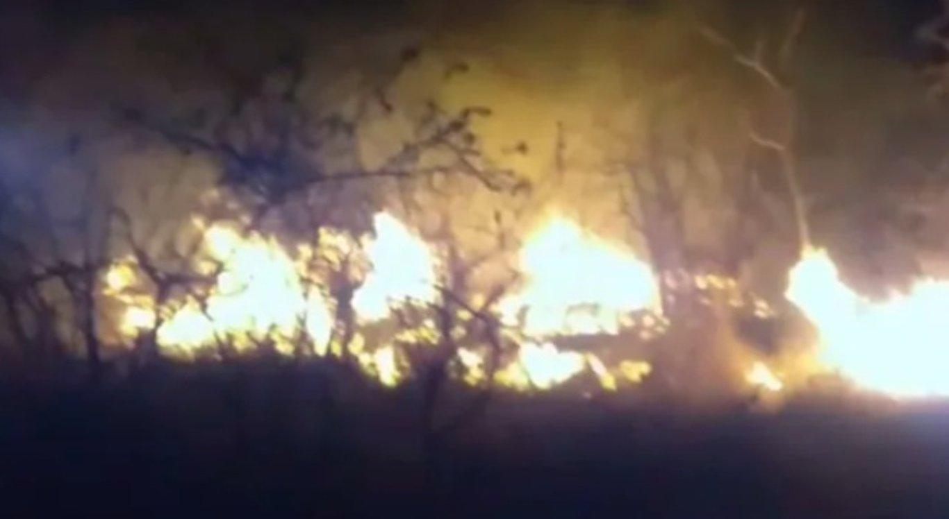 Incêndio atinge Floresta