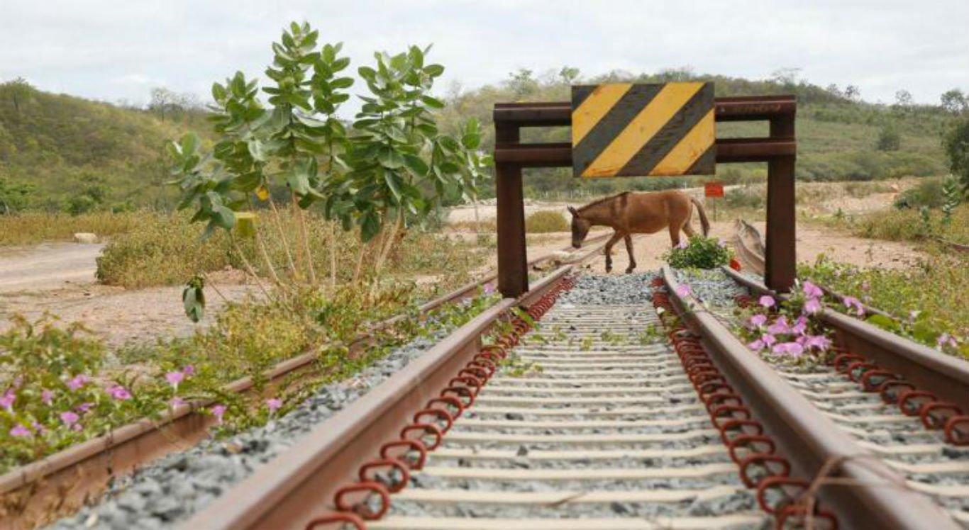 Obras da ferrovia começaram em 2006