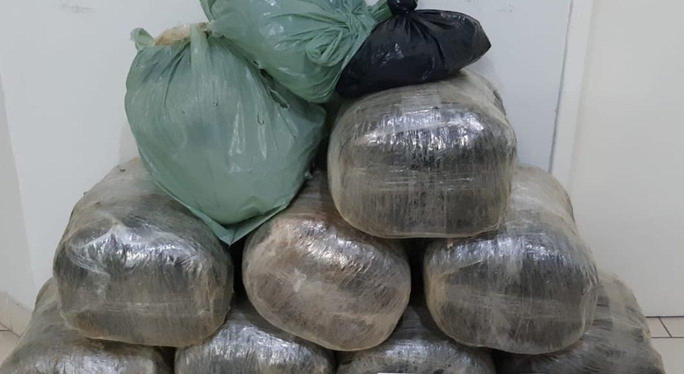43,8 kg de maconha foram apreendidos