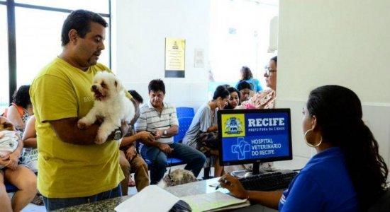 Hospital Veterinário do Recife volta a fazer castrações e cirurgias; confira como agendar e os requisitos