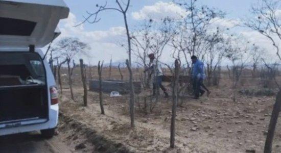 Idoso morreu após fugir de ataque de abelhas em Taquaritinga do Norte