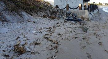 Obra teria poluído Praia de Muro Alto, no Litoral Sul de Pernambuco