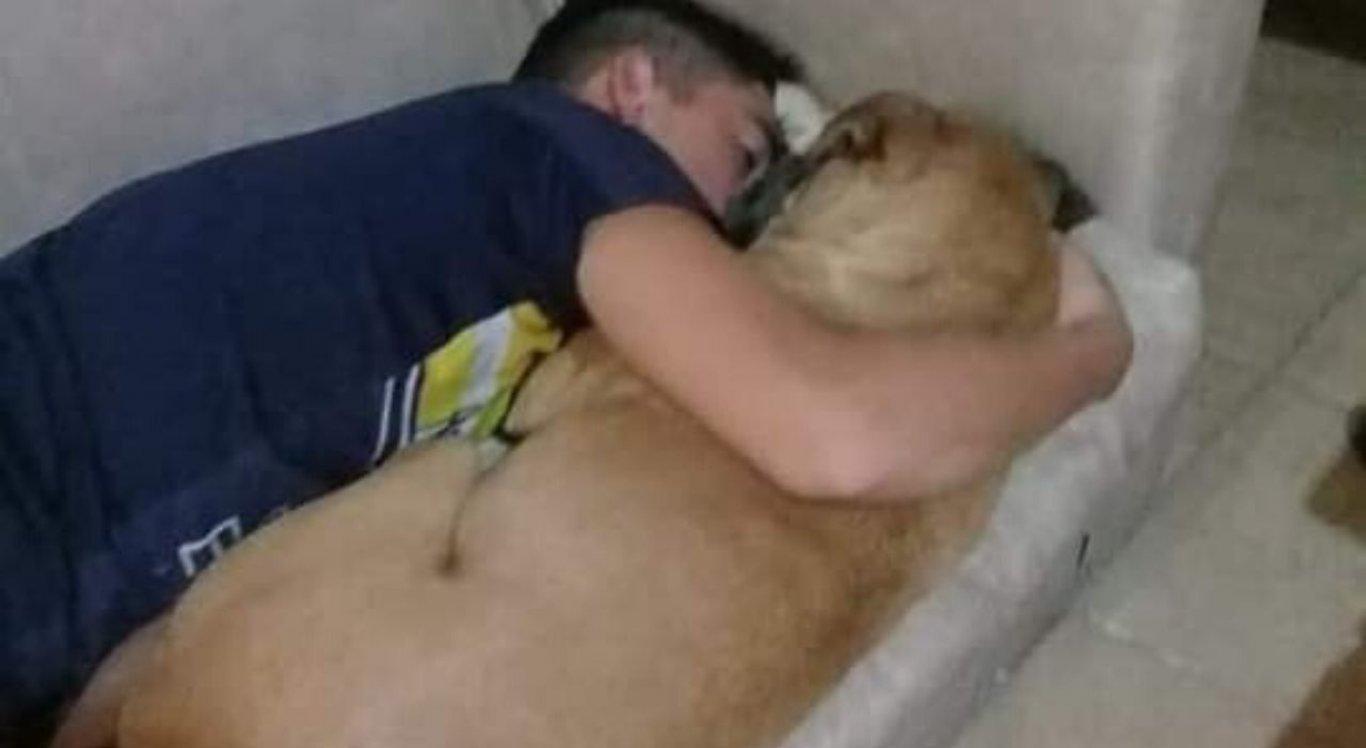 Dono do animal tentou acalmar a cadela, que não resistiu ao ataque cardíaco