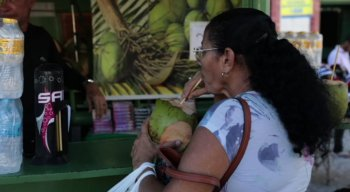 Devido ao calorão, fica difícil ir à praia e não tomar uma água de coco para se hidratar
