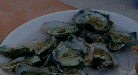 Após morte de empresário com suspeita de infecção, confira cuidados ao consumir ostras