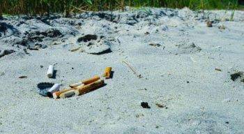 Segundo a ONG SEO/Birdlife, uma bituca de cigarro dura até dez anos para se decompor