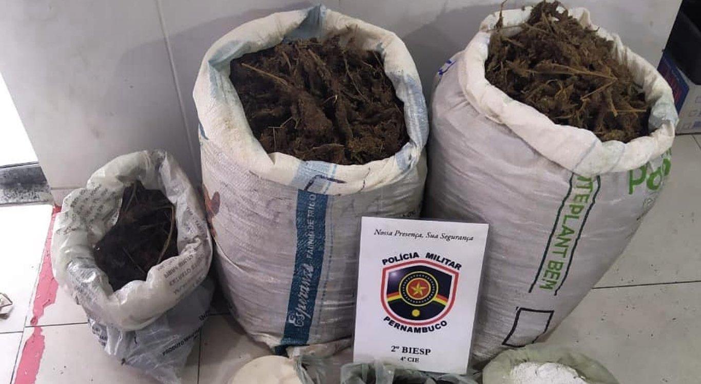Drogas foram apreendidas pela polícia