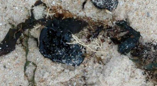 Manchas de óleo voltam a aparecer em praia na divisa entre Paraíba e Pernambuco