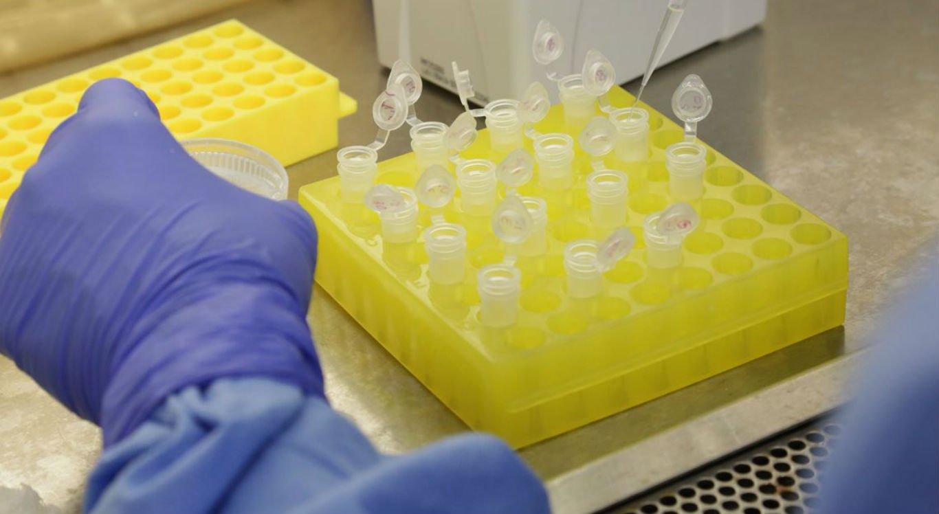 Ministério da Saúde continua investigando casos suspeitos de coronavírus no Brasil