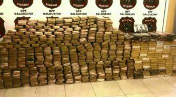 Segundo a polícia, essa foi a maior apreensão de cocaína feita até hoje