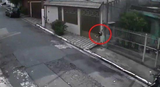 Vídeo: homem arremessa cachorro por cima de portão