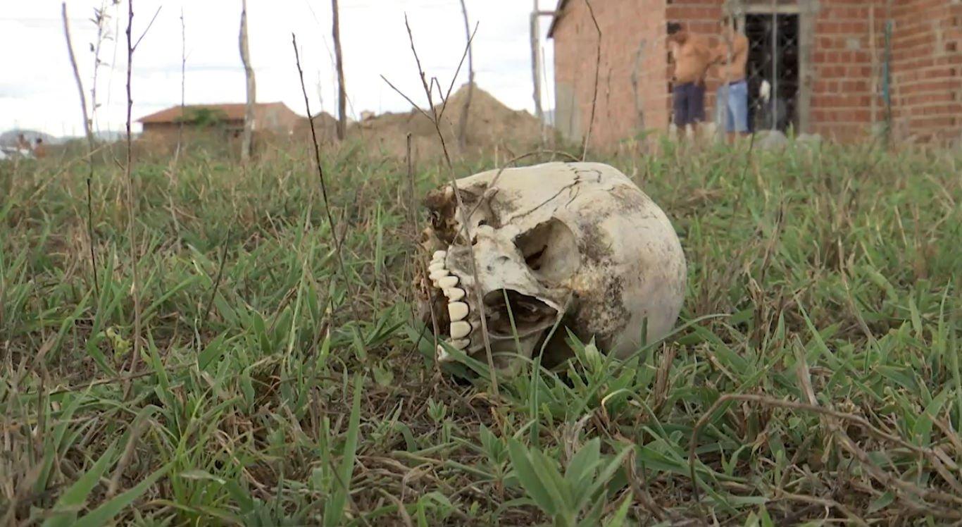 Crânio humano foi localizado durante o fim de semana