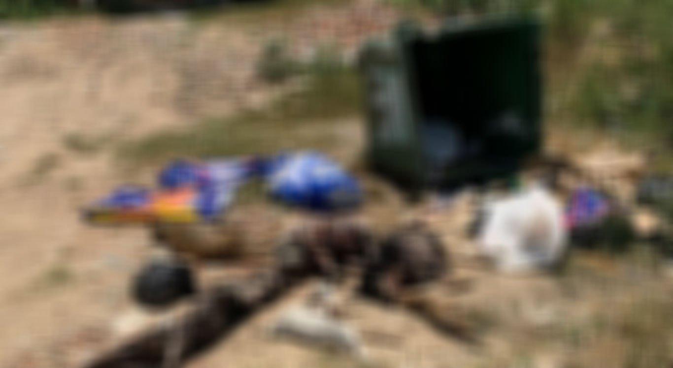 Cachorros e outros animais mortos foram encontrados próximo à AME Animal