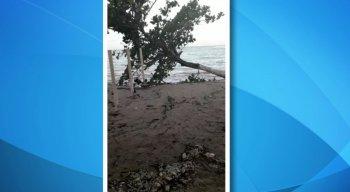 A prefeitura de Itamaracá informou que já está fazendo um monitoramento na área