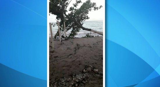 Vídeo mostra destruição causada por avanço do mar em Itamaracá