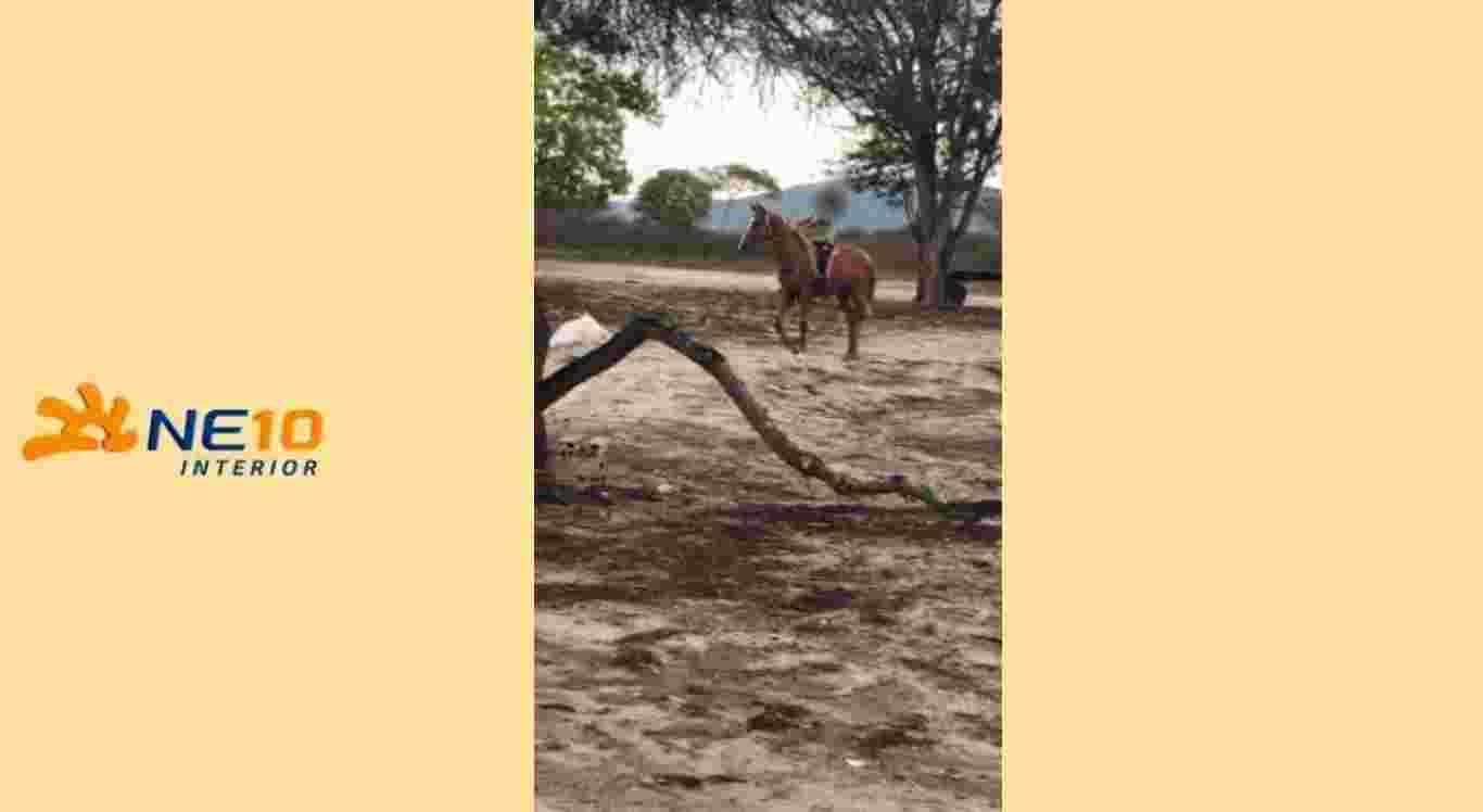 Menino tinha o costume de andar a cavalo