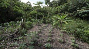 O corpo do homem foi encontrado em um terreno baldio em Abreu e Lima