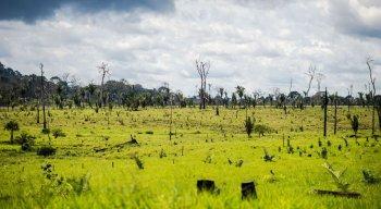 Objetivo é combater desmatamento ilegal e a focos de incêndio na Amazônia Legal
