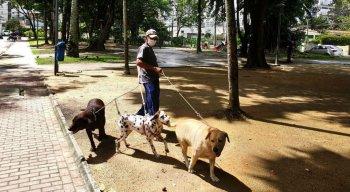 Bruno passeia com seus cães na Praça dos Cachorros, Jaqueira, Zona Norte do Recife