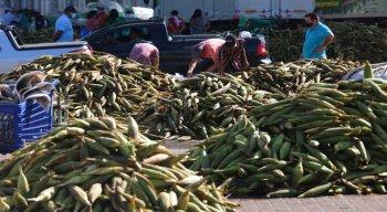 Expectativa do Ceasa é que as vendas de milho se equiparem ao ano passado mesmo com o coronavírus
