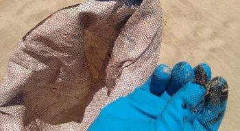 Óleo voltou a ser visto em praias do Nordeste