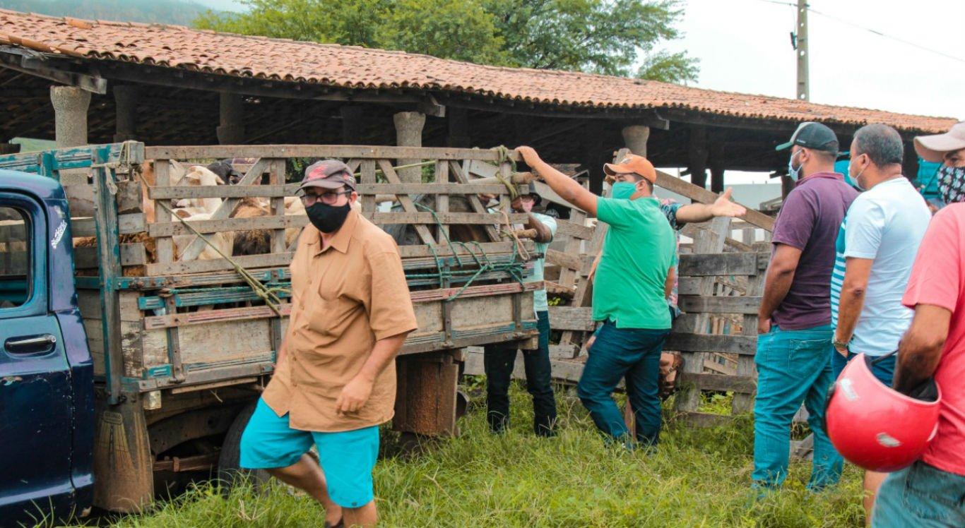 Feira de animais recebe ações preventivas contra a covid-19