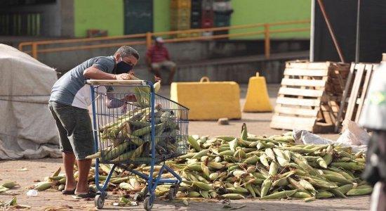 Ceasa bate recorde de vendas e preço da mão de milho cai