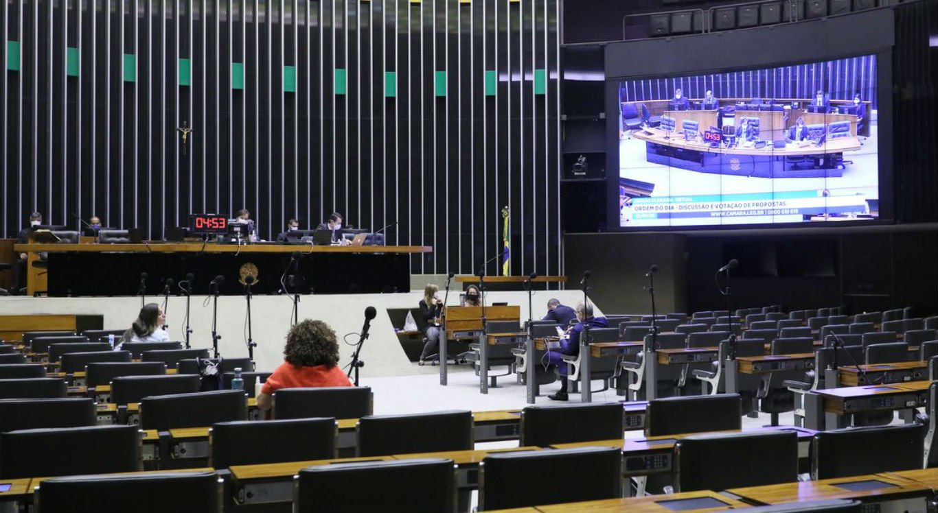 Najara Araújo/Câmara dos Deputados/Divulgação