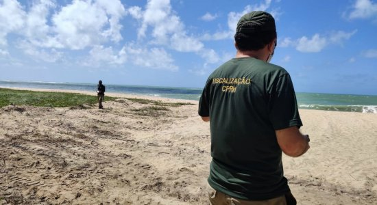 Prefeitura de Ipojuca é multada por crime ambiental em construção na praia de Maracaípe