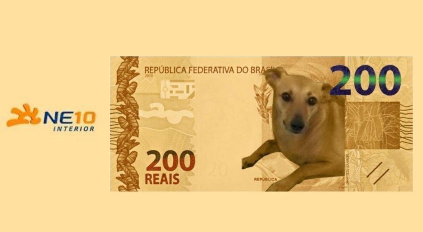 Pedidos para o virta-lata ser o novo personagem da nota viralizaram desde o anúncio da nova moeda