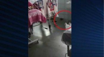 O vídeo foi enviado para a produção da TV Jornal