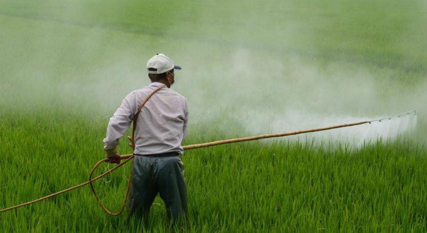 Lei regulamenta armazenamento de agrotóxicos