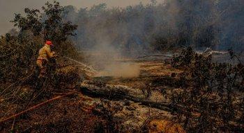Mais de 40 bombeiros da Força Nacional de Segurança Pública já atuam desde o dia 24 de setembro na região pantaneira.