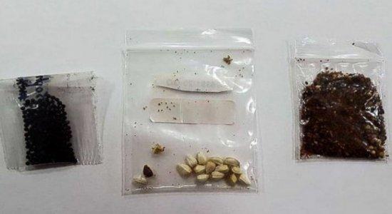 Polícia Federal investiga sementes misteriosas vindas da China