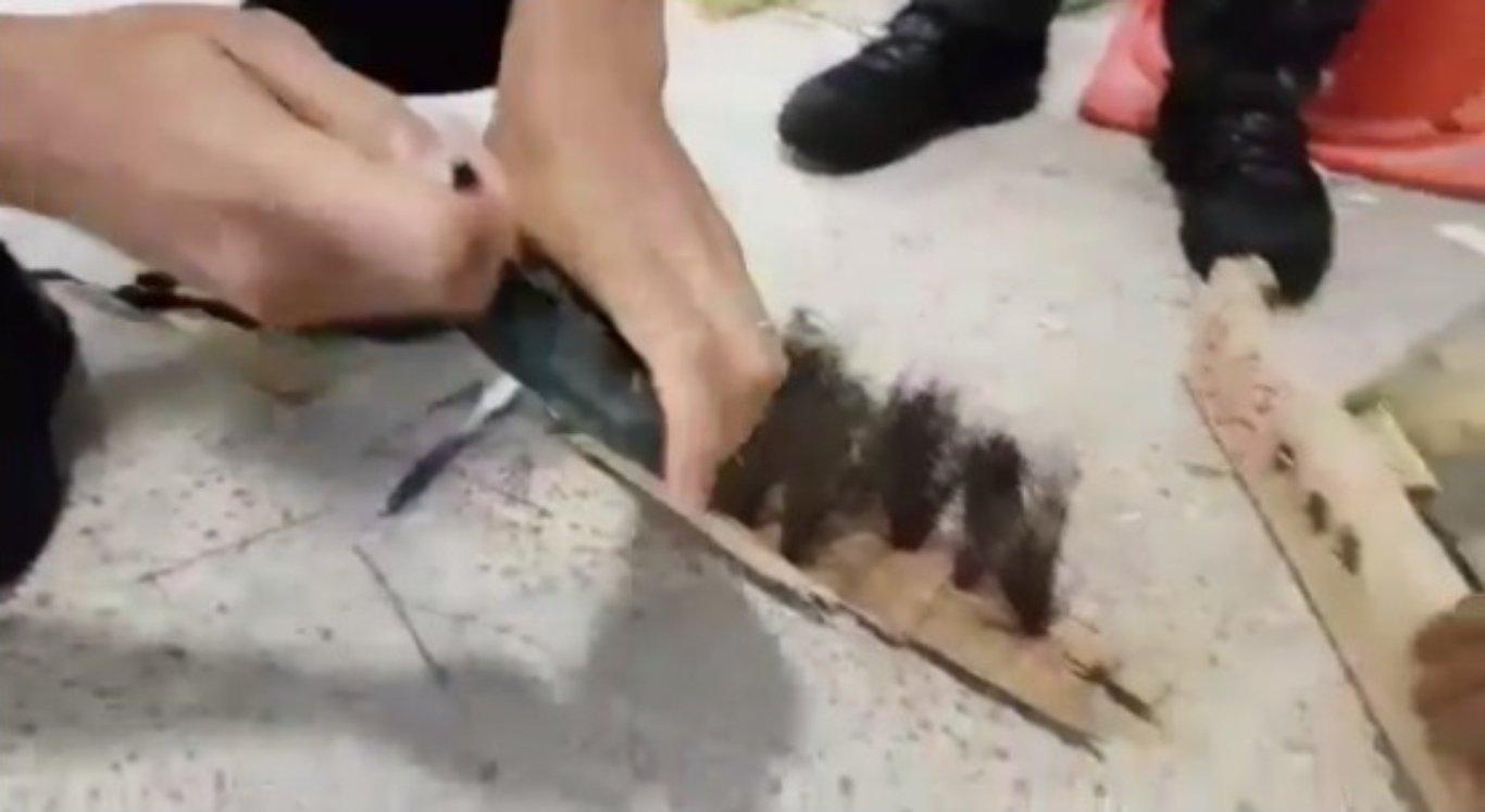 Polícia encontrou aparelhos eletrônicos dentro de cabos de vassoura