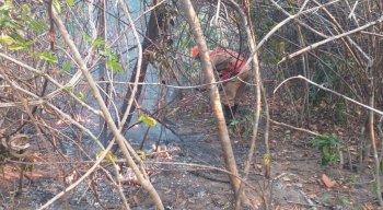 A baixa umidade e alta temperatura na região contribuíram para o fogo se espalhar.