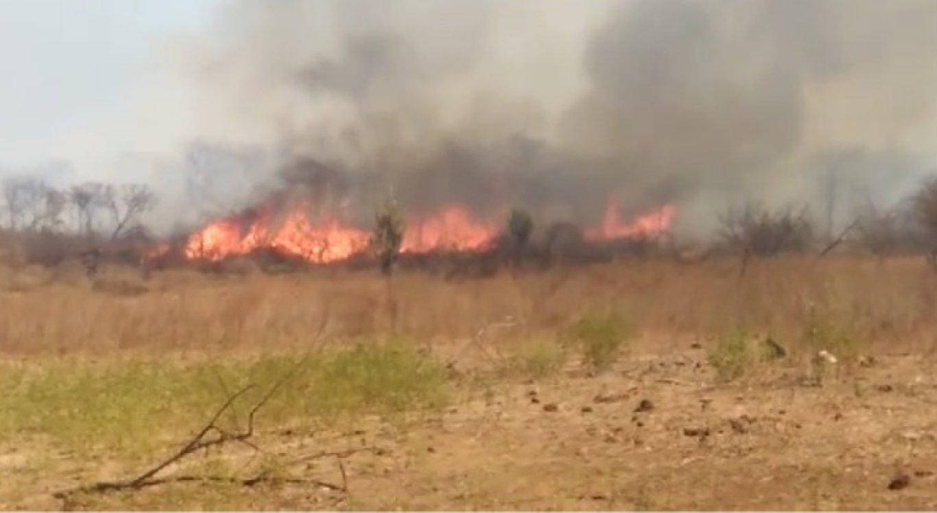 Fogo continua a atingir áreas do Sertão