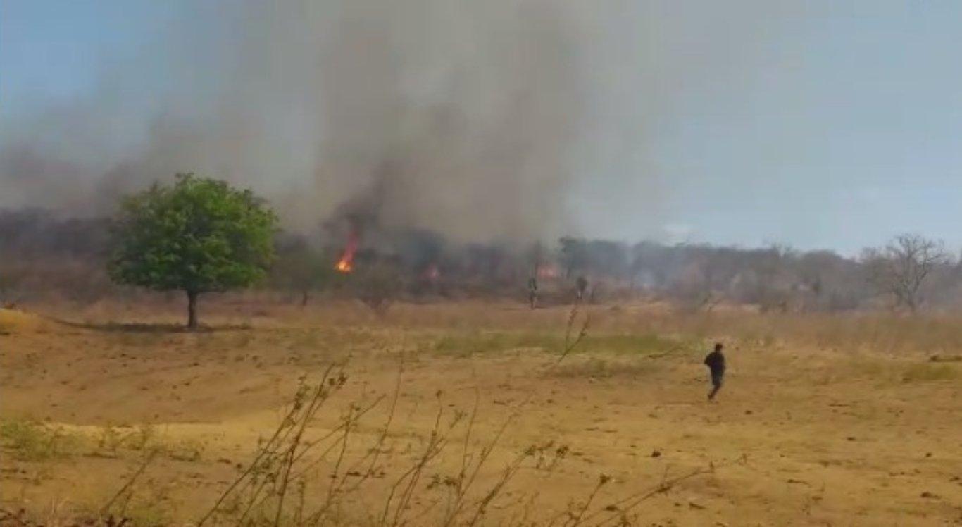 Fogo atinge vegetação do Sertão pernambucano
