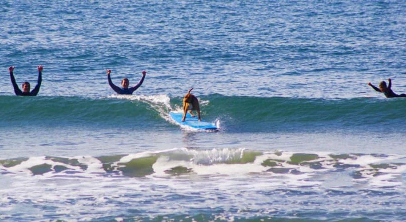 Cachorro gostou de surfar com os donos