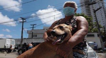 Prefeitura do Recife realiza vacinação antirrábica, neste sábado (7), na Ilha do Retiro, Afogados e Mangueira