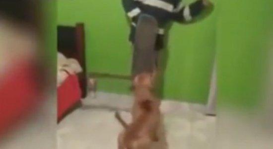 Vídeo mostra pitbull com facão tentando atacar jovem