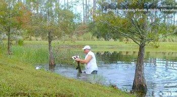 Homem abriu boca de crocodilo para retirar filhote