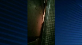 Princípio de incêndio assustou passageiros do Metrô do Recife