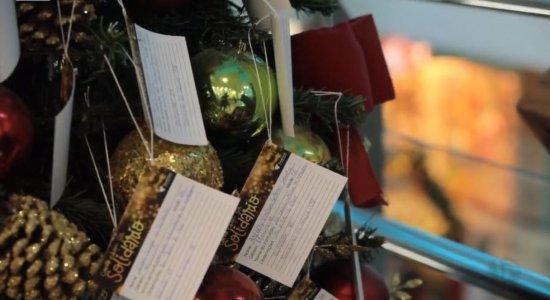 Shopping Tacaruna tem árvore de Natal com pedidos de crianças; veja como presentear