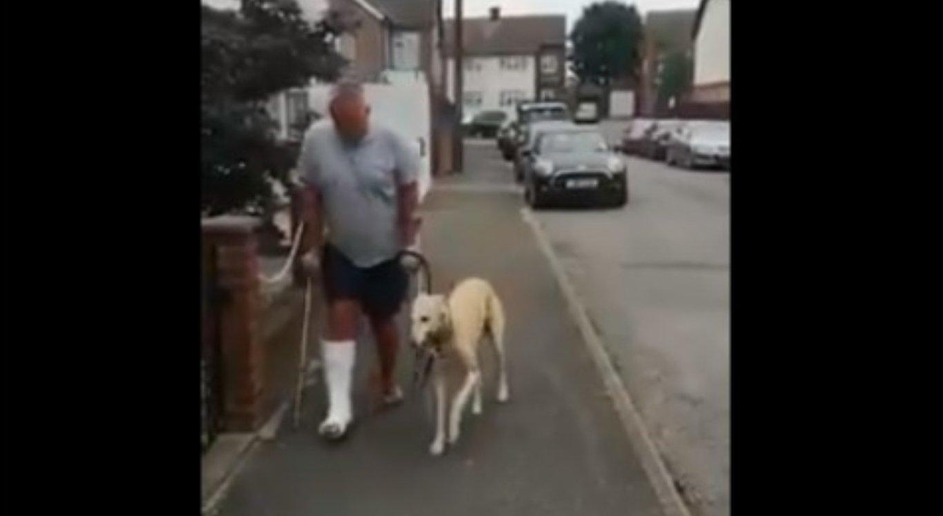 Homem paga R$ 2,1 mil no médico e descobre que cachorro mancava para imitá-lo