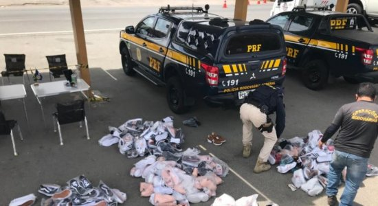 Carga com 203 tênis falsificados é apreendida pela polícia no Agreste