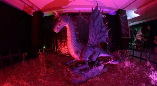 RioMar recebe Exposição Internacional Dragões